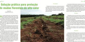 PROTETOR DE MUDAS FLORESTAIS – SOLUÇÃO PRÁTICA PARA PROTEÇÃO DE MUDAS FLORESTAIS