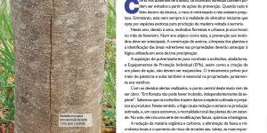 OS RISCOS DE INCÊNDIOS FLORESTAIS EM PLANTIOS DE ESPÉCIES NOBRES